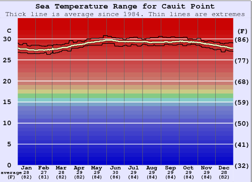 Cauit Point Gráfico de Temperatura del Mar